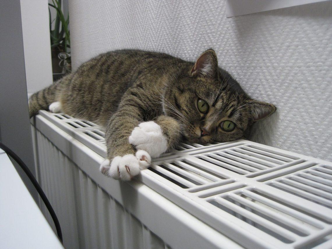 Jak v zimě ušetřit za topení
